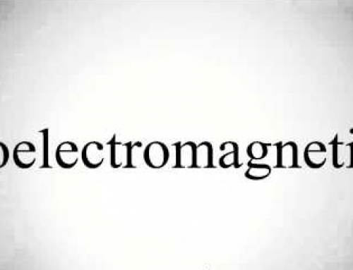The Basis of Bioelectromagnetism