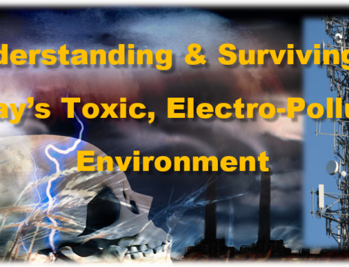 Understanding & Surviving in Today's Toxic, Electro-Polluted Environment