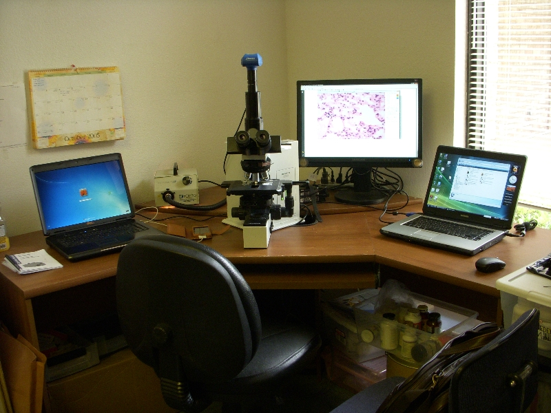Darkfield Research System Setup